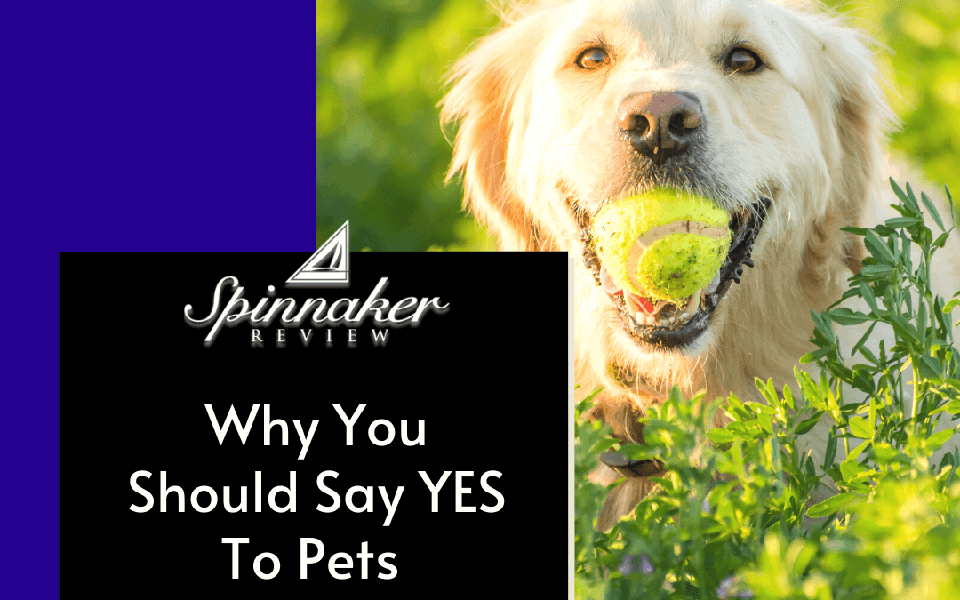Why We Should Say Yes to Pets
